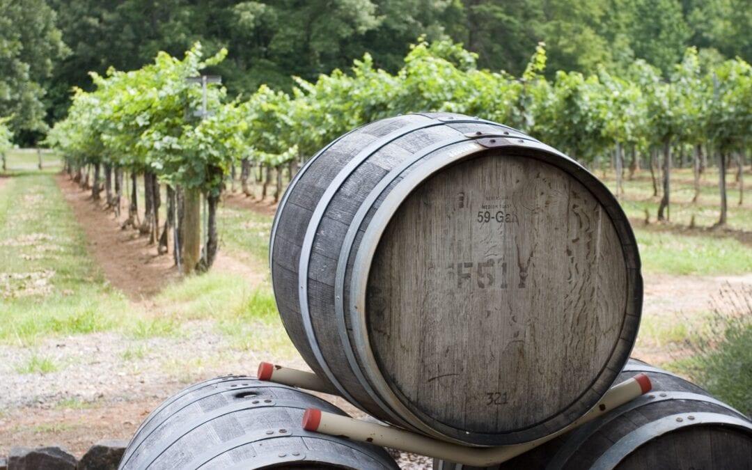 5 Long Island Vineyards to Visit this Summer